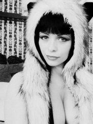 Volveria (36)